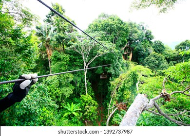 Zipline is a challenging outdoor activity. Fun and exciting, Adventure activity zip line in the jungle