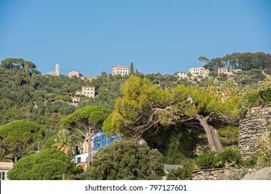 Zoagli landscape (Liguria, Italy.