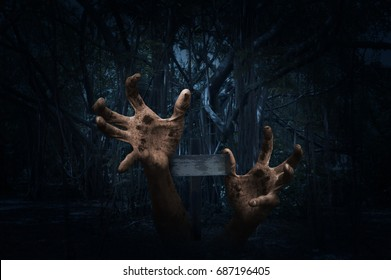 Zombie hand rising out from ground with cross over spooky forest at night time, Horror background, Halloween concept