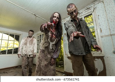 Zombies come into an abandoned house