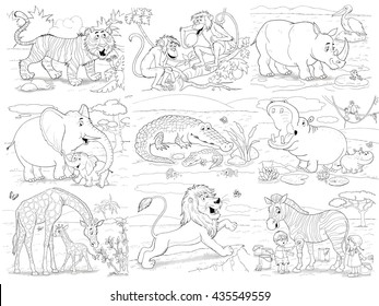Zebra Teeth Stock Images, Royalty-Free Images & Vectors ...
