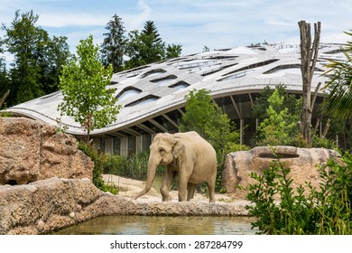 ZURICH, SWITZERLAND - JUNE 13: The new elephant compound in Zurich Zoo on June 13, 2015. The Zurich Zoo supports Kaeng Krachan National Park in Thailand as it protects the animals living there.