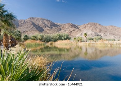 Zzyzx, California  is a settlement in San Bernardino County, California, formerly the site of the Zzyzx Mineral Springs and Health Spa and now the site of the Desert Studies Center.