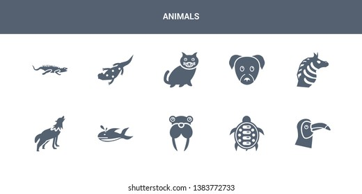 10 animals vector icons such as toucan, turtle, walrus, whale, wolf contains zebra, puppy, kitten, salamander, iguana. animals icons