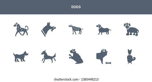 10 dogs vector icons such as chinook dog, chow chow dog, cockapoo dog, cocker spaniel corgi contains coton de tulear dachshund dalmatian doberman english setters dogs icons