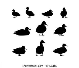 10 duck silhouette