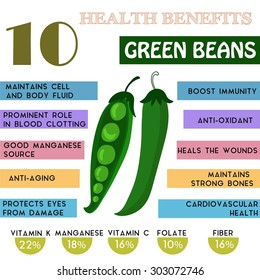 10 Health benefits information of Green Beans. Nutrients infographic,  vector illustration. - stock vector