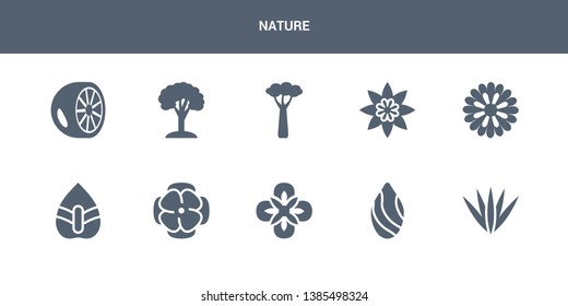10 nature vector icons such as acicular, almond, alstroemeria, anemone, anthurium contains aster, astrantia, baobab, beech, bergamot. nature icons