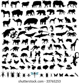 100 Animal Vector Silhouettes