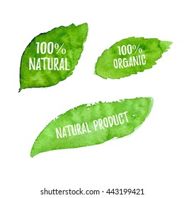 100% natural, organic product, ecology, nature design. Vector green watercolor leaves, bio, eco label and shape on white background. Hand drawn stains set.
