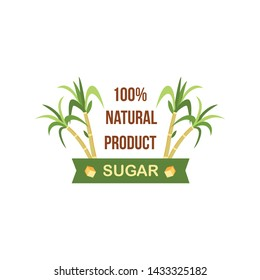 100% natural sugar cane product label design, green plant with tropical leaves for sweet food and drinks, flat badge with banner for organic produce ad - isolated vector illustration