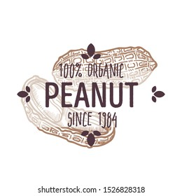 100 organic peanut, groundnut, monkey nut with shell and cracked open, cotiledons, label for all natural food packaging design, farmer market tag, hand drawn sketch, illustration on white background