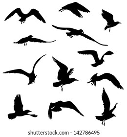 11 black silhouettes of seagulls flying vector illustration