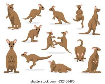 12 Kangaroo Poses Vector Illustration