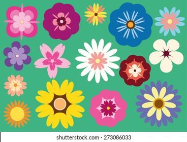 15 Flowers Package