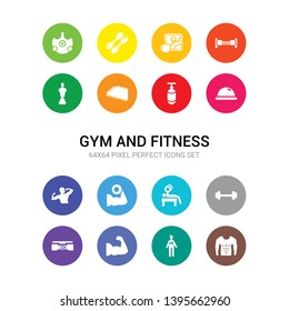 16 gym and fitness vector icons set included abs, anatomy, arm, athletic strap, barbell, bench press, biceps, bodybuilder, bosu ball, boxing bag, yoga mat icons