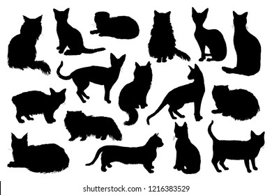 16 hand drawn cat silhouettes. Vector illustration