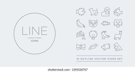 16 line vector icons set such as mole, mongoose, moray, moth, musk contains nymphicus hollandicus, orangutan, orca, pallas cat. mole, mongoose, moray from animals outline icons. thin, stroke