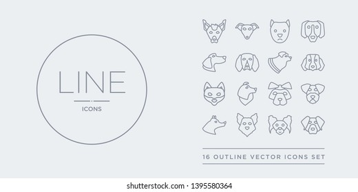 16 line vector icons set such as rottweiler dog, russian toy dog, samoyed dog, schipperke schnauzer contains shar pei shetland sheepdog shiba inu st. bernard rottweiler russian toy samoyed from dogs