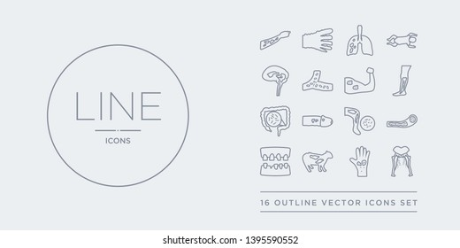 16 line vector icons set such as sciatica, scleroderma, scrapie, scurvy, sepsis contains septicemia, sexually transmitted diseases, shigellosis, shin splints. sciatica, scleroderma, scrapie from