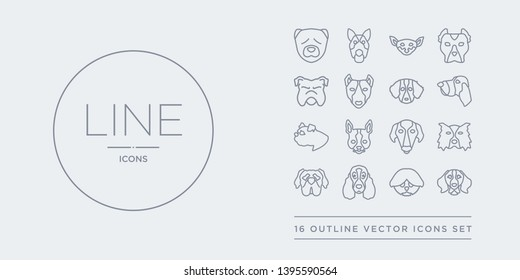 16 line vector icons set such as bernese mountain dog, bichon frise dog, bloodhound dog, boerboel border collie contains borzoi boston terrier boxer bracco italiano bernese mountain bichon frise