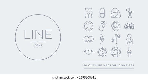 16 line vector icons set such as ball of the knee, basophil, big cellule, big lips, blood supply system contains blood vessel, bones joint, bosom, brain body organ. ball of the knee, basophil, big