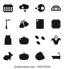 16 vector icon set : calendar, cloude service, greenhouse, outdoor light, flippers, cutting board, seeds, corn, rabbit, pumpkin, pile of garbage, bath