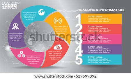 169 infographic flyer templates business vector stock vector
