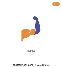 2 color muscle concept vector icon. isolated two color muscle vector sign symbol designed with blue and orange colors can be use for web, mobile and logo. eps 10.