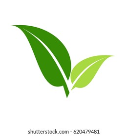 2 Leaves green logo, vector