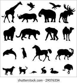 20 Animal Black Silhouette Vector Illustrations