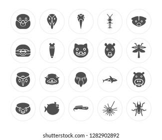 20 Snigir, Deadlock, Moray, Globe Fish, Sparrow, Skunk, Hyena, Swan, Colibri, Ant Eater modern icons on round shapes, vector illustration, eps10, trendy icon set.