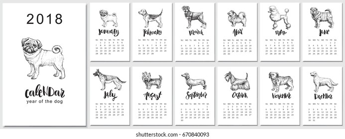 2018 vector calendar design. Hand drawn llustrations with dogs, symbol of Chinese New Year and monthly hand written modern calligraphy.