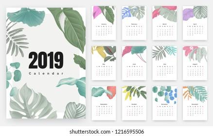 2019 calendar design, set of botanical illustrations for 12 months