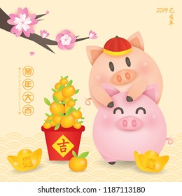 2019 Chinese New Year, Year of Pig Vector with 2 cute piggy with gold ingots, tangerine and blossom tree.  (Translation: Auspicious Year of the pig)