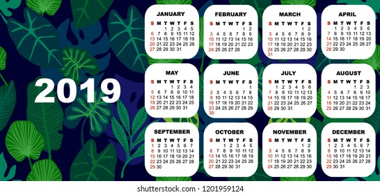 2019 colorful calendar. Simple template on tropical background. Trendy stationery design. Blue, green.