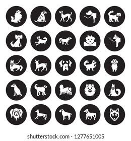 25 vector icon set : Pomeranian dog, Irish Setter Terrier Italian Greyhound Japanese Chin Newfoundland Maltipoo Komondor dog isolated on black background.