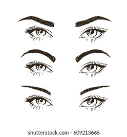 3 basic eyebrow shape types vector illustration. Fashion female brow