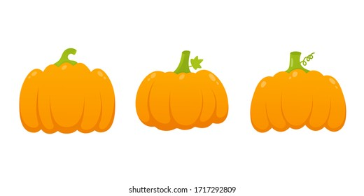 3 orange pumpkins set with leaf and gradient colors flat style design vector illustration isolated on white background. Autumn halloween, thanksgiving day pumpkin, vegetable graphic fresh and tasty.