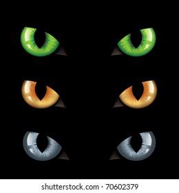 3 Wild Cat Eyes, On Black Background, Vector Illustration