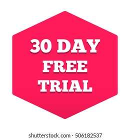30 day free trial. Flat vector typography icon, symbol, design illustration on white background. Can be used for business concept.