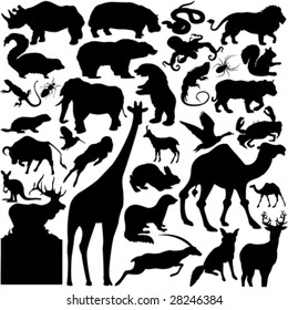 30 pieces of detailed vectoral wild animal silhouettes