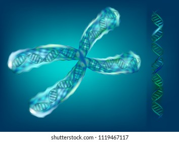 3D illustration of chromosomes. Genetics.