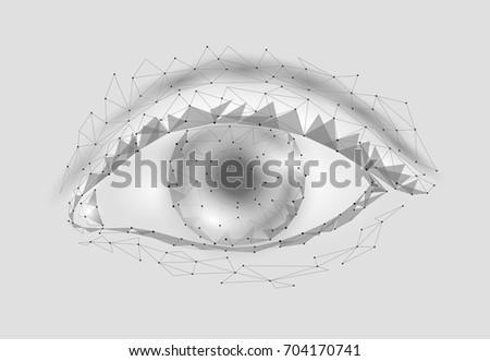 3 D Model Woman Eye Gray White Stock Vector (Royalty Free) 704170741