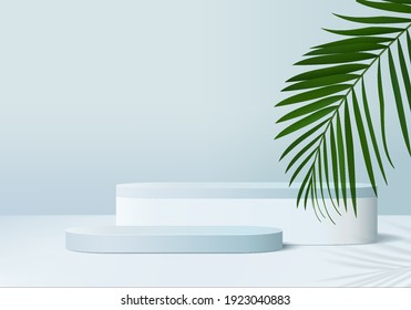 3d platform background products display podium scene with palm leaf geometric platform. background display 3d rendering with podium. stand to show cosmetic products. Stage on pedestal display blue 3d