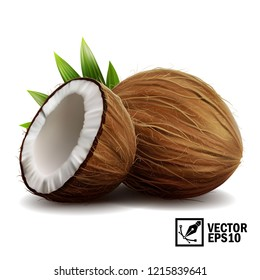 3D realistic isolated vector set of whole coconut, coconut halves and palm leaves