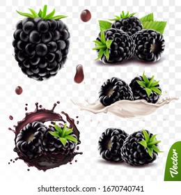 3d realistic transparent isolated vector set, whole and slice of blackberry, blackberry in a splash of juice with drops, blackberry in a splash of milk or yogurt