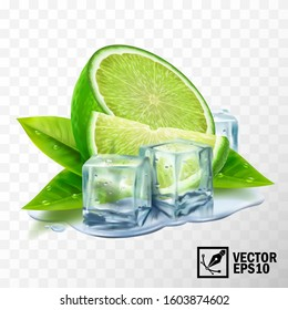 3D realistic vector set of elements lime with mint or tea leaves and ice cubes, half lime, sliced lime, leaves, puddle water