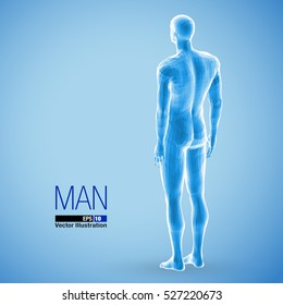 3d standing man, full length, blue colored. Back view. Polygonal vector illustration