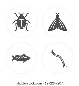 4 Bug, Zander, Butterfly, Centipede modern icons on round shapes, vector illustration, eps10, trendy icon set.